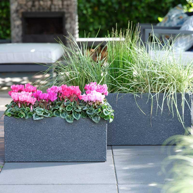 pflanzkübel auf der terrasse