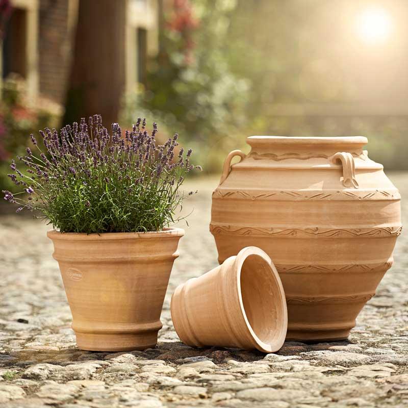 pflanzkübel aus terracotta
