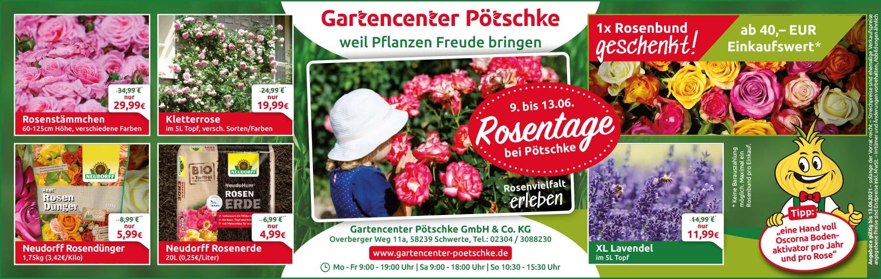 Rosentage im Gartencenter Pötschke
